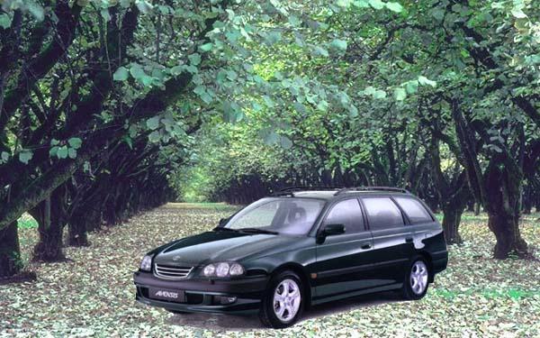 Фото Toyota Avensis Wagon  (1997-2000)