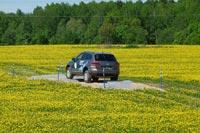 Экстремальный тест-драйв Volkswagen Touareg. Фото Carexpert.ru